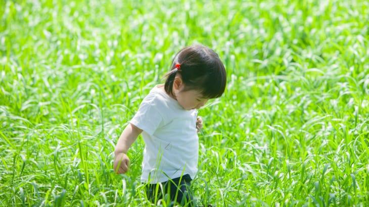 光が丘で動き回る乳幼児が動物/植物と触れ合える場所3選(2歳児、3歳児)